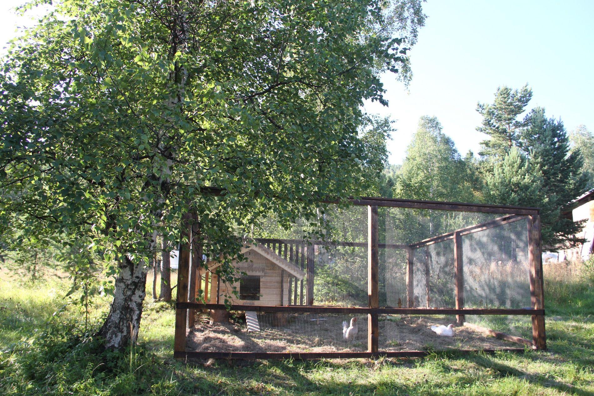 База отдыха «Кругобайкальская» Иркутская область, фото 9