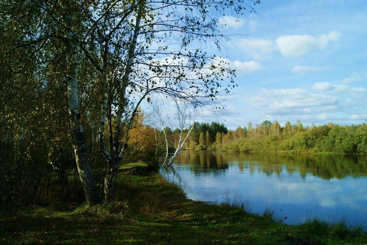 """Конно-туристический комплекс """"Верхом по Мещёре"""" Рязанская область, фото 4"""