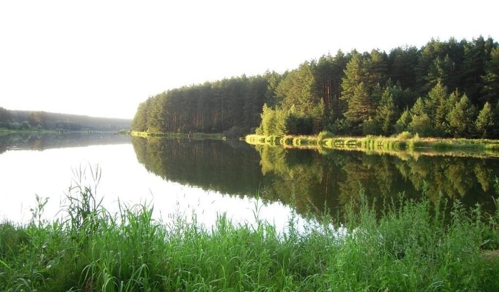База отдыха «Царицына Слободка» Брянская область, фото 16