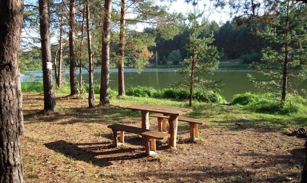 База отдыха «Царицына Слободка» Брянская область, фото 13
