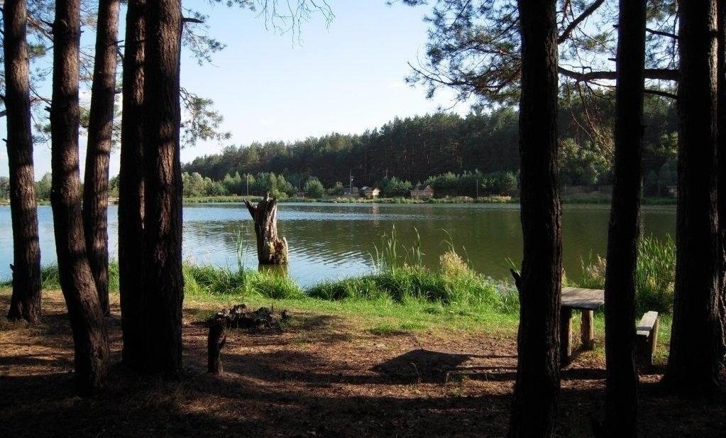 База отдыха «Царицына Слободка» Брянская область, фото 14