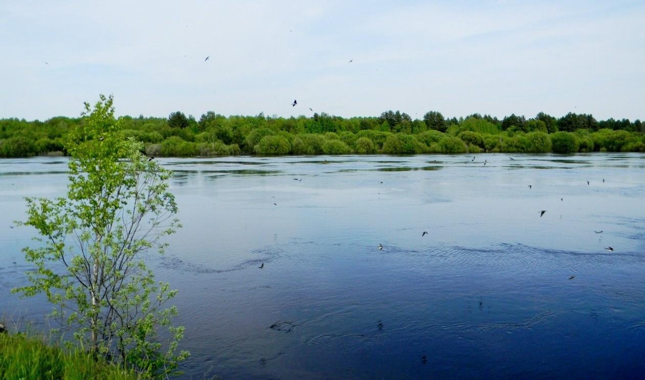 Загородный отель «Река Чаек» Нижегородская область, фото 22