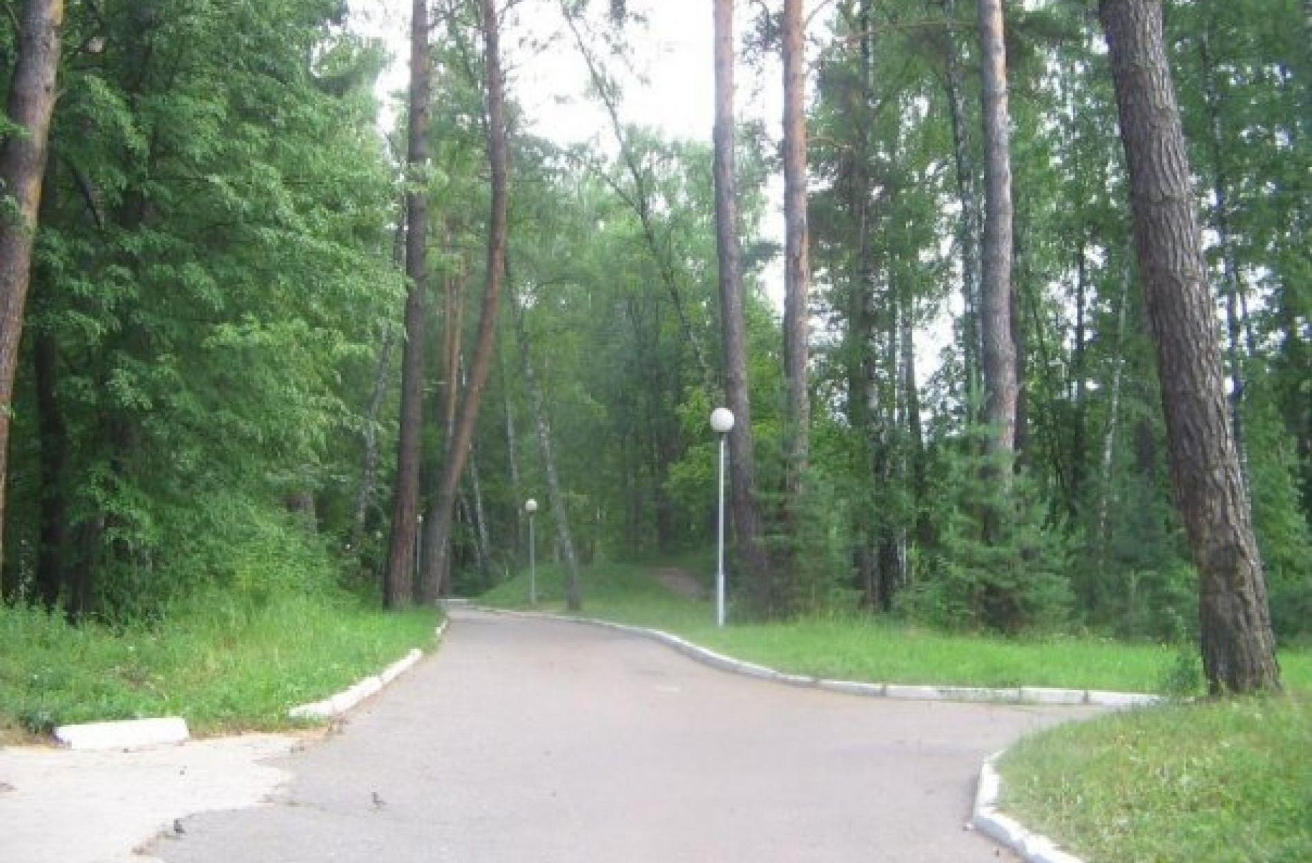 """База отдыха """"Галактика"""" Калужская область, фото 4"""
