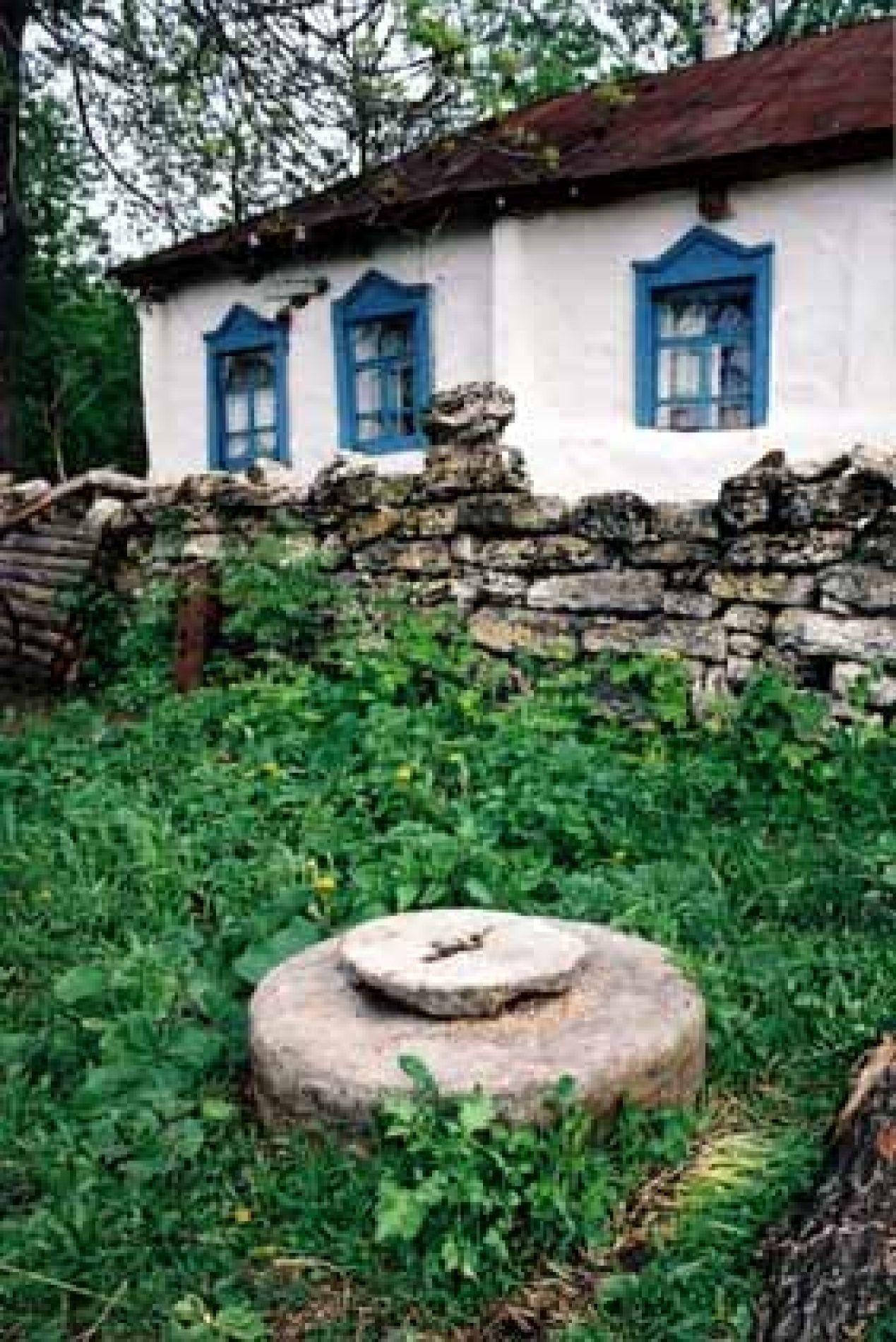 Конный двор «Старая мельница» Липецкая область, фото 18