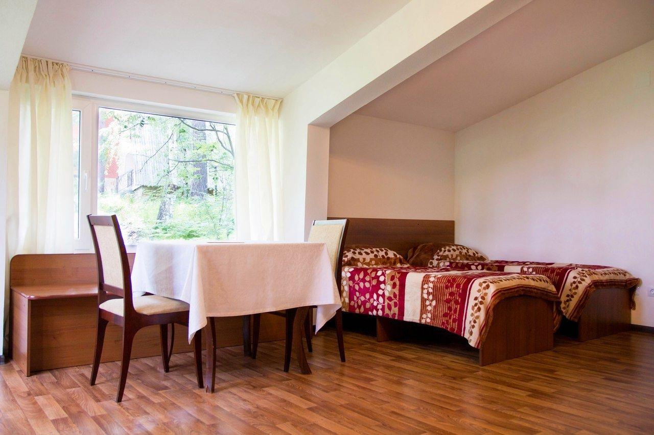 Парк-отель «Юность» Челябинская область Дуплекс «Студио», фото 5