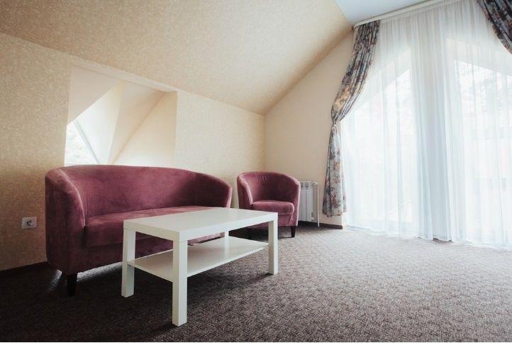Парк-отель «Юность» Челябинская область Пентхаус, фото 5