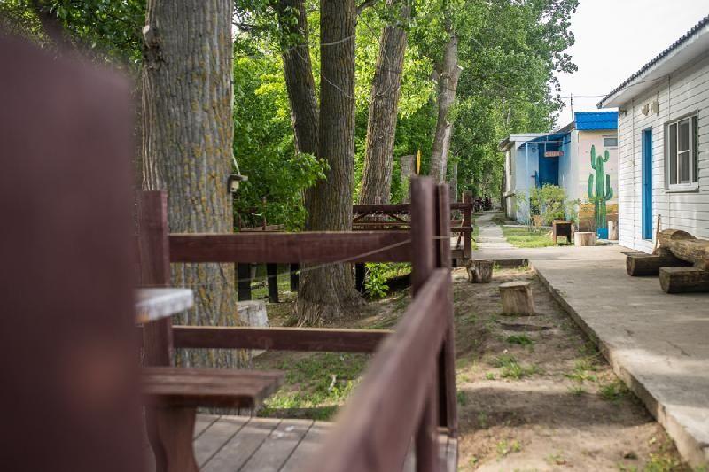 База отдыха «Солнышко» Астраханская область, фото 2