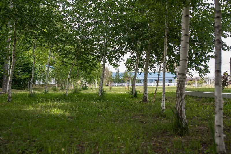 База отдыха «Солнышко» Астраханская область, фото 11