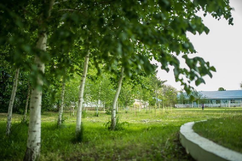 База отдыха «Солнышко» Астраханская область, фото 16