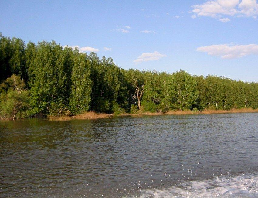 База отдыха «Синяя птица» Астраханская область, фото 5