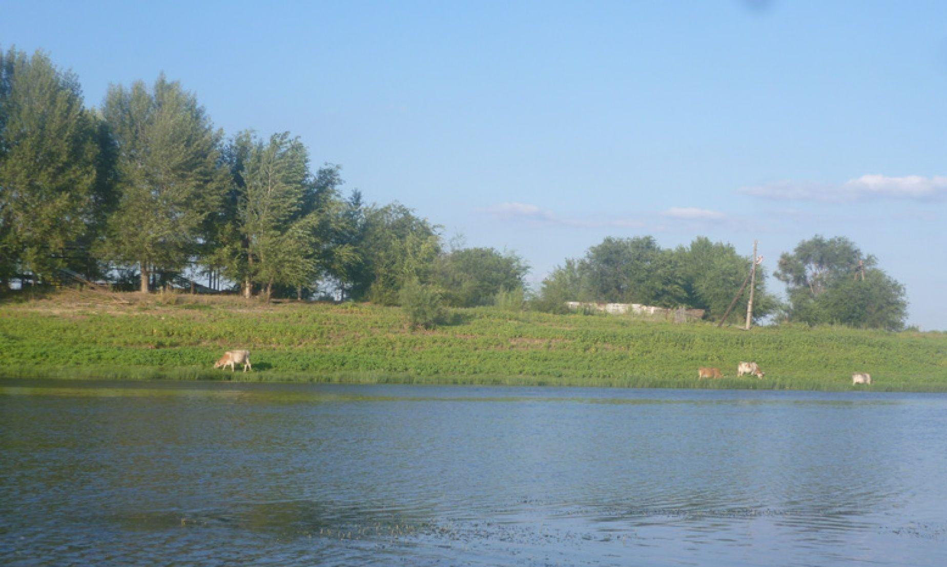 Рыболовно-охотничий клуб «Путина» Астраханская область, фото 14