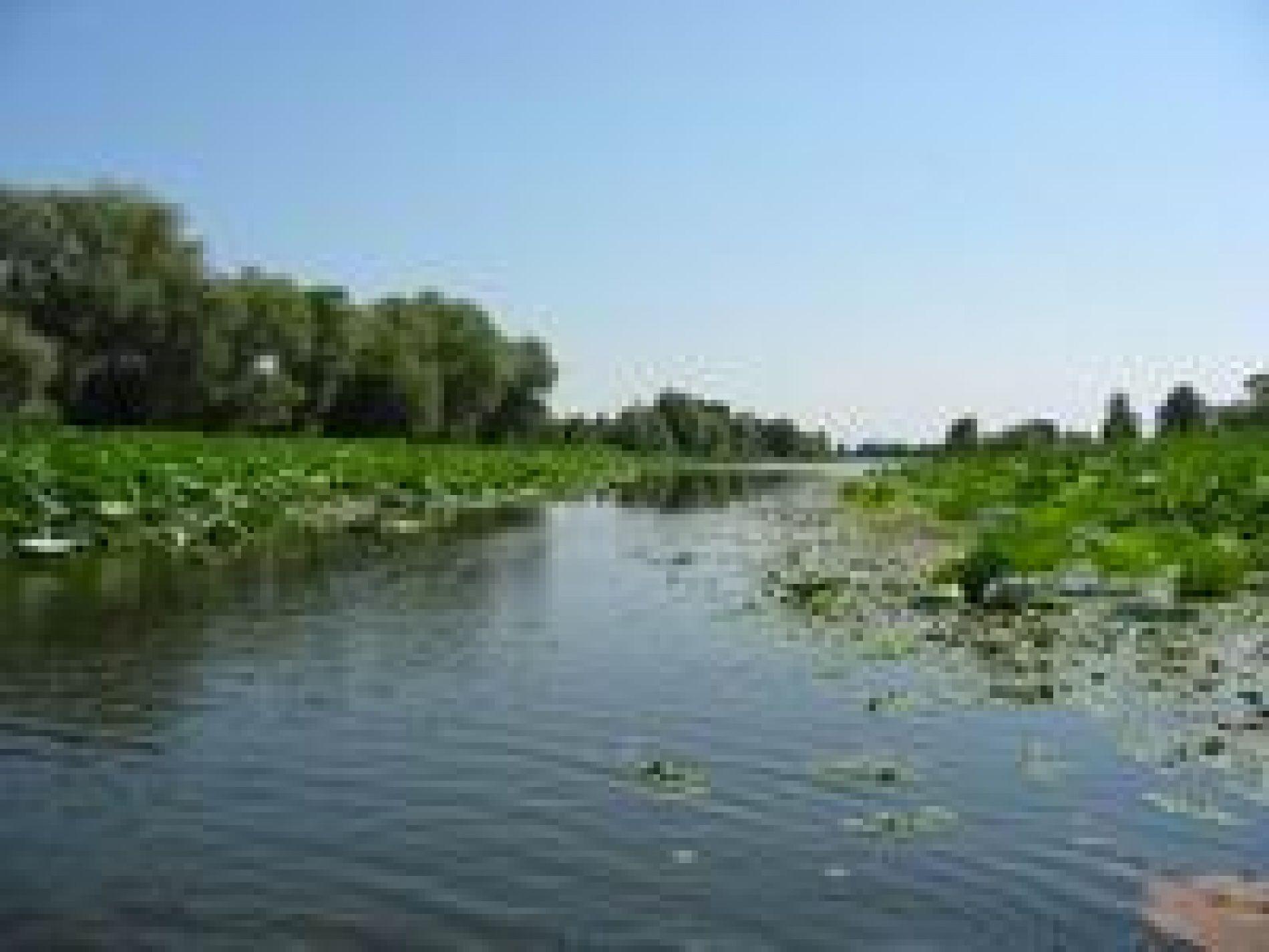 """Рыболовная база """"Плавучая деревня"""" Астраханская область, фото 10"""