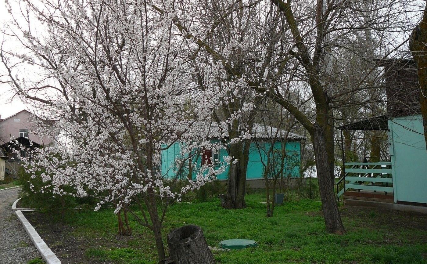 """Рыболовно-охотничья база """"Пеликан"""" Астраханская область, фото 4"""