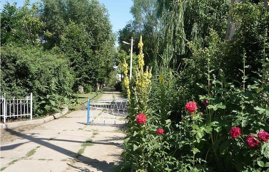 База отдыха «Парус» Астраханская область, фото 8