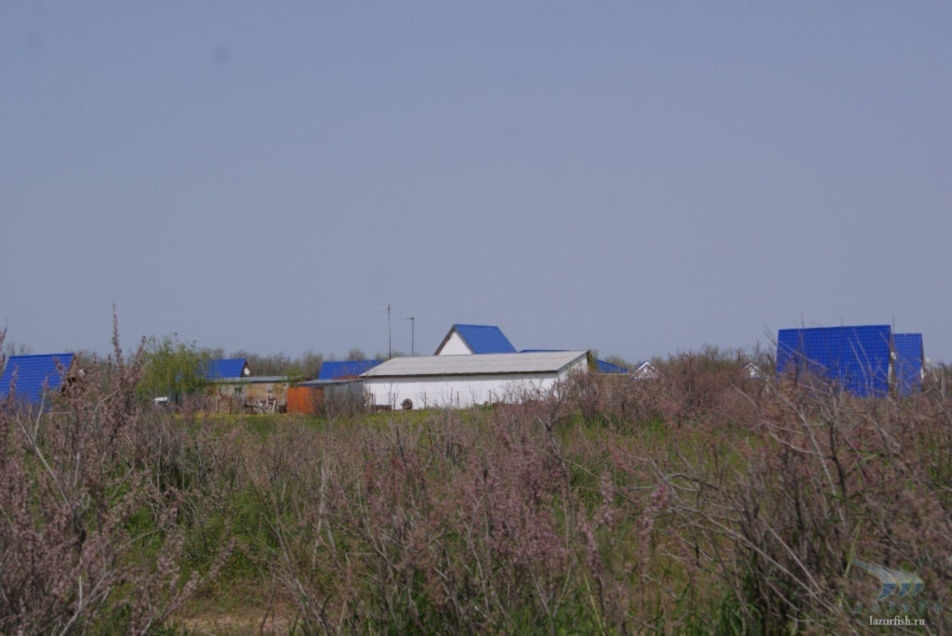 """База отдыха """"Лазурь"""" Астраханская область, фото 10"""