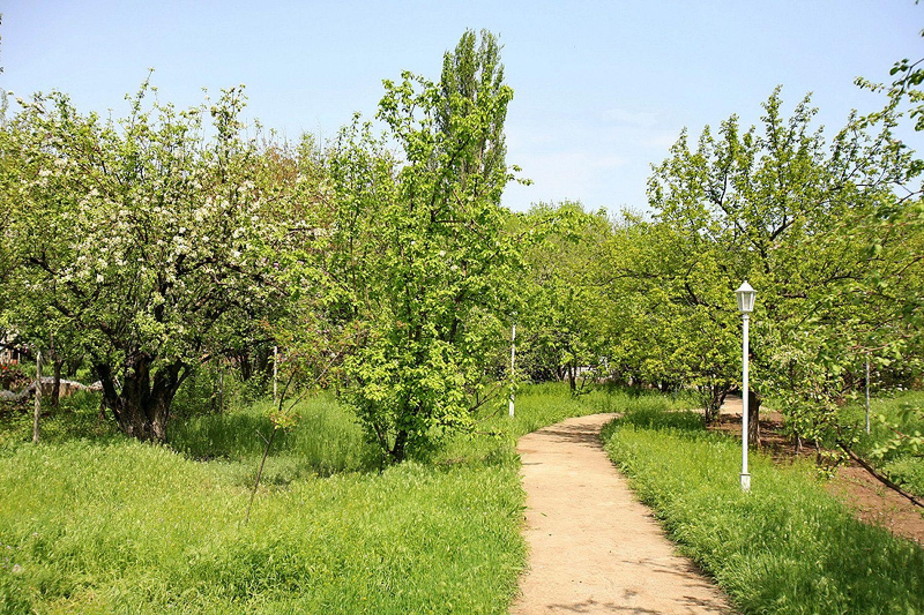База отдыха «Домнареке» Астраханская область, фото 8