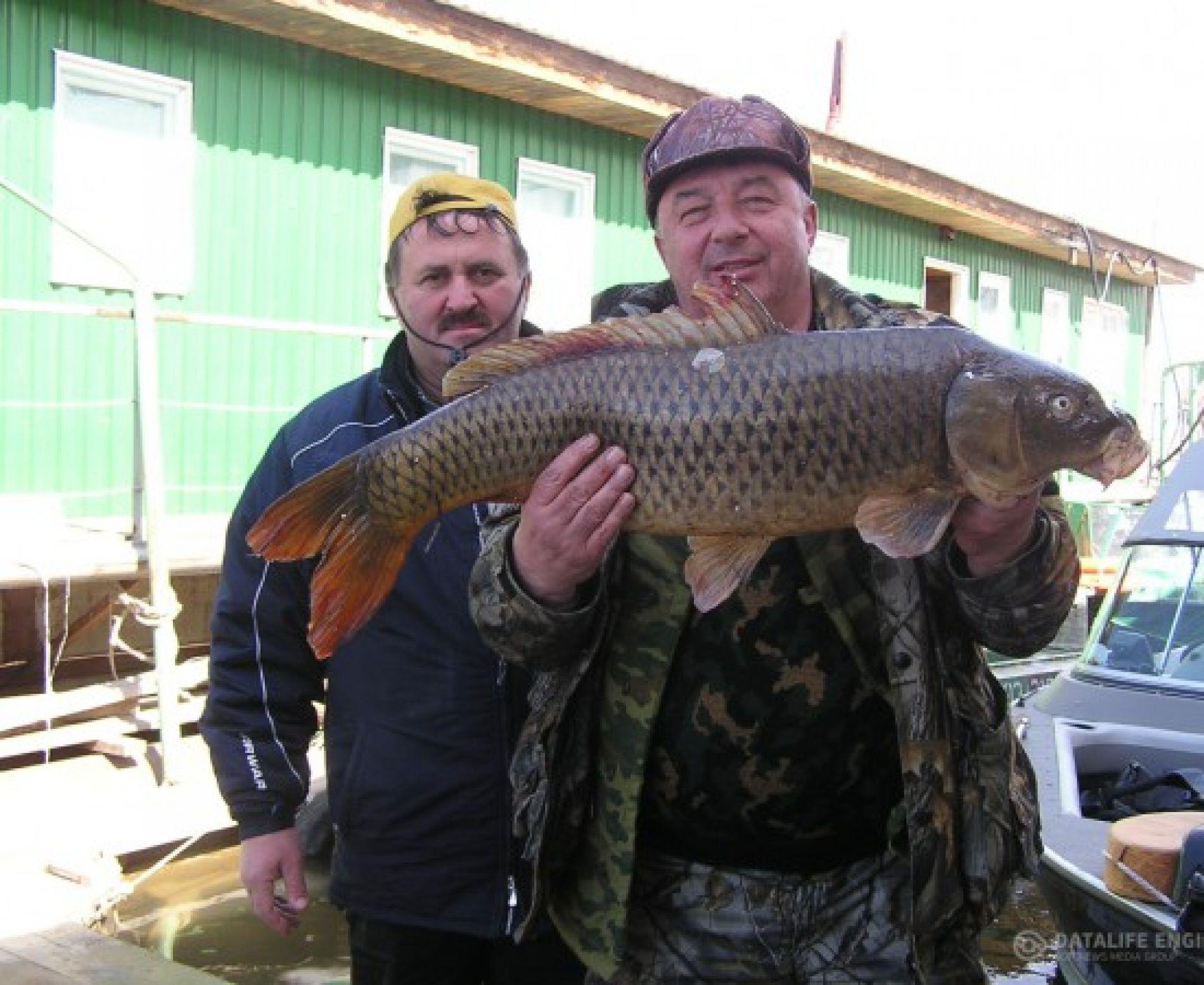 """База отдыха """"Блесна"""" Астраханская область, фото 23"""