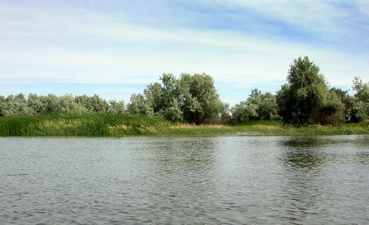 """Турбаза """"Астра"""" Астраханская область, фото 16"""