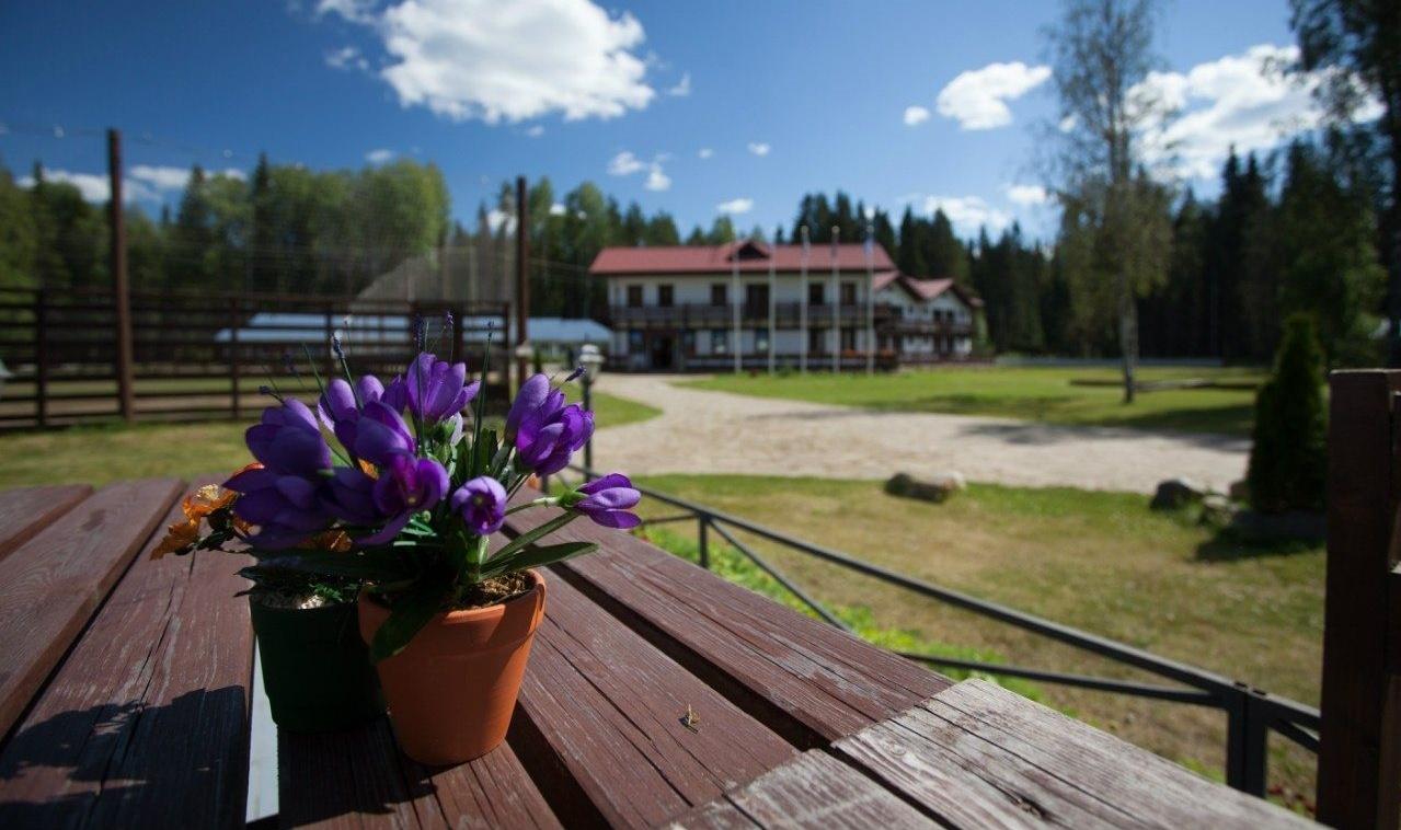 Клуб-отель «Гардарика» Республика Карелия, фото 12