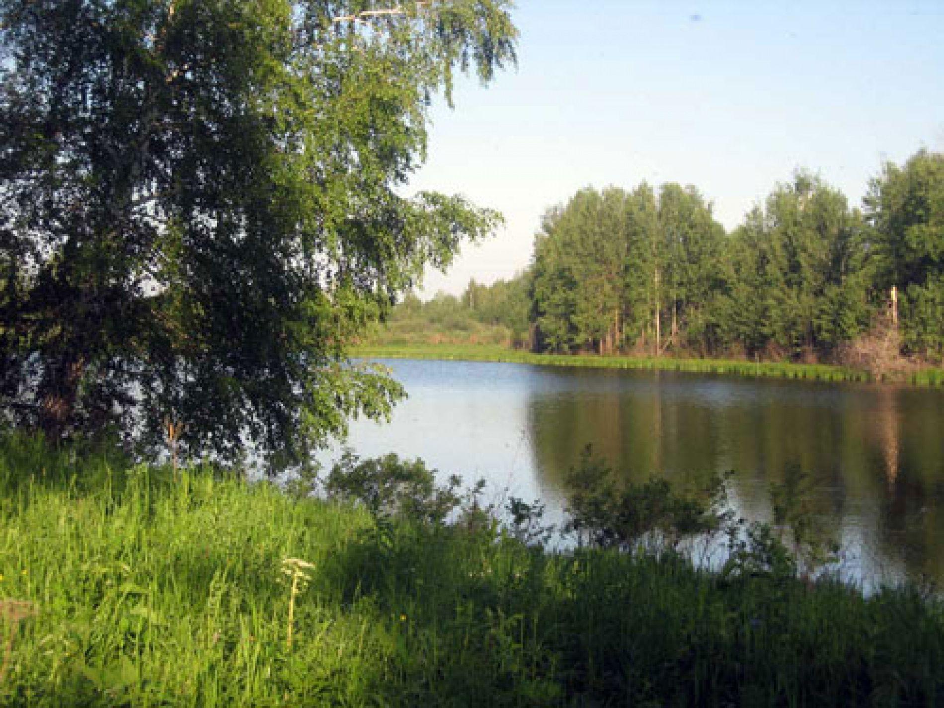 """База отдыха """"Сибирская рыбалка"""" Томская область, фото 7"""
