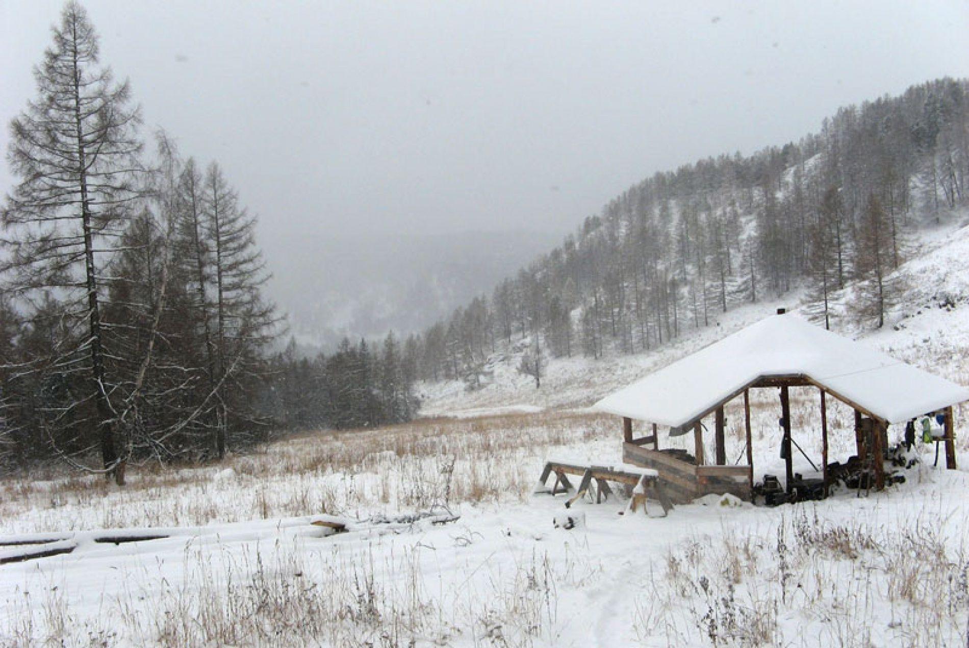 """База отдыха """"Алан-Коо"""" Республика Алтай, фото 3"""