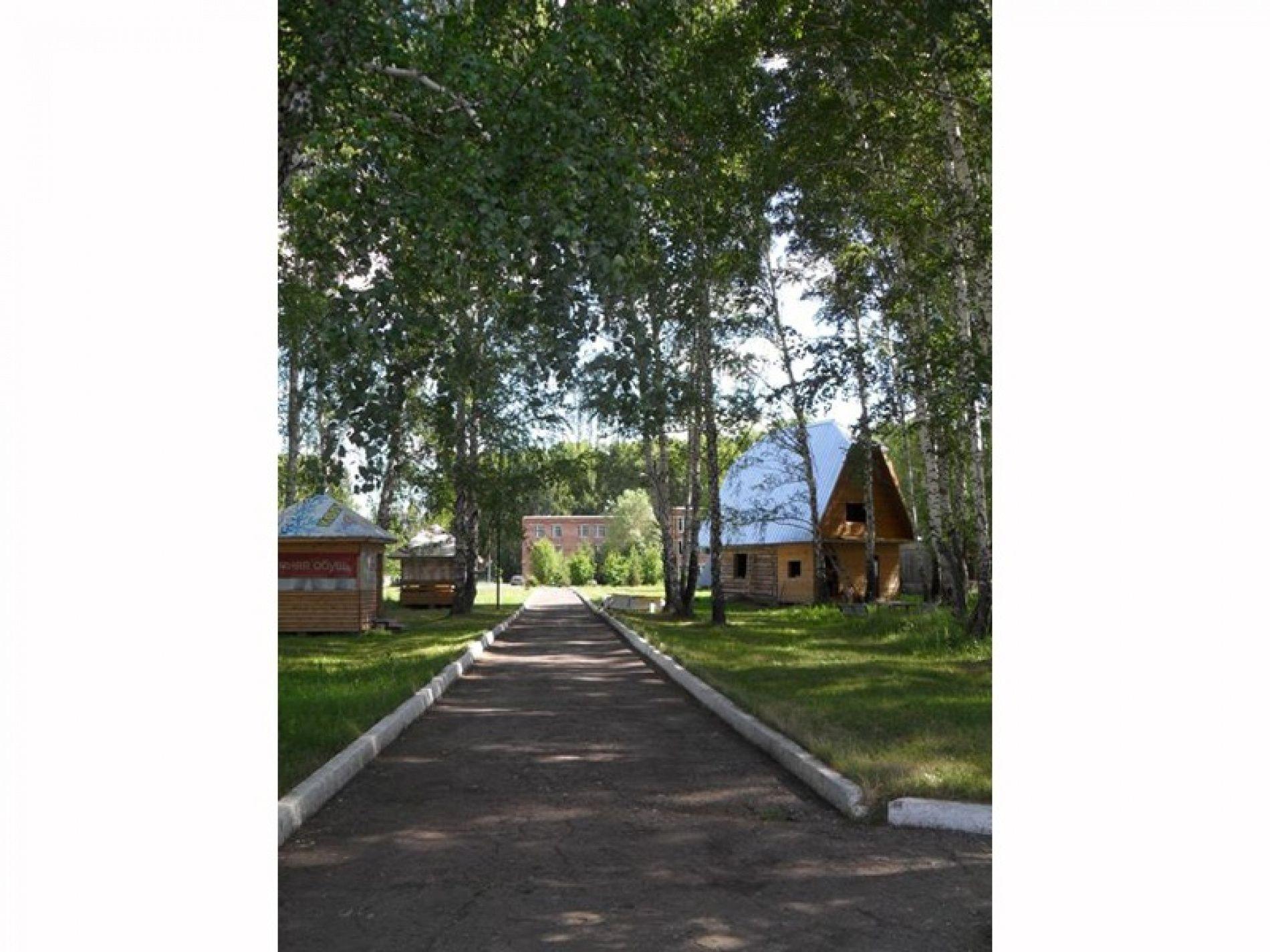 """База отдыха """"Вестфалика"""" Новосибирская область, фото 5"""