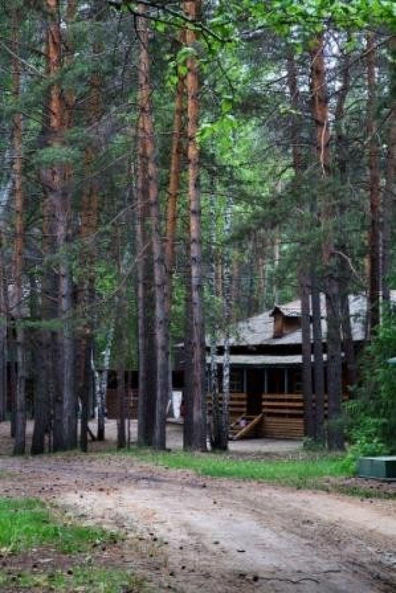 """База отдыха """"Каракан"""" Новосибирская область, фото 2"""