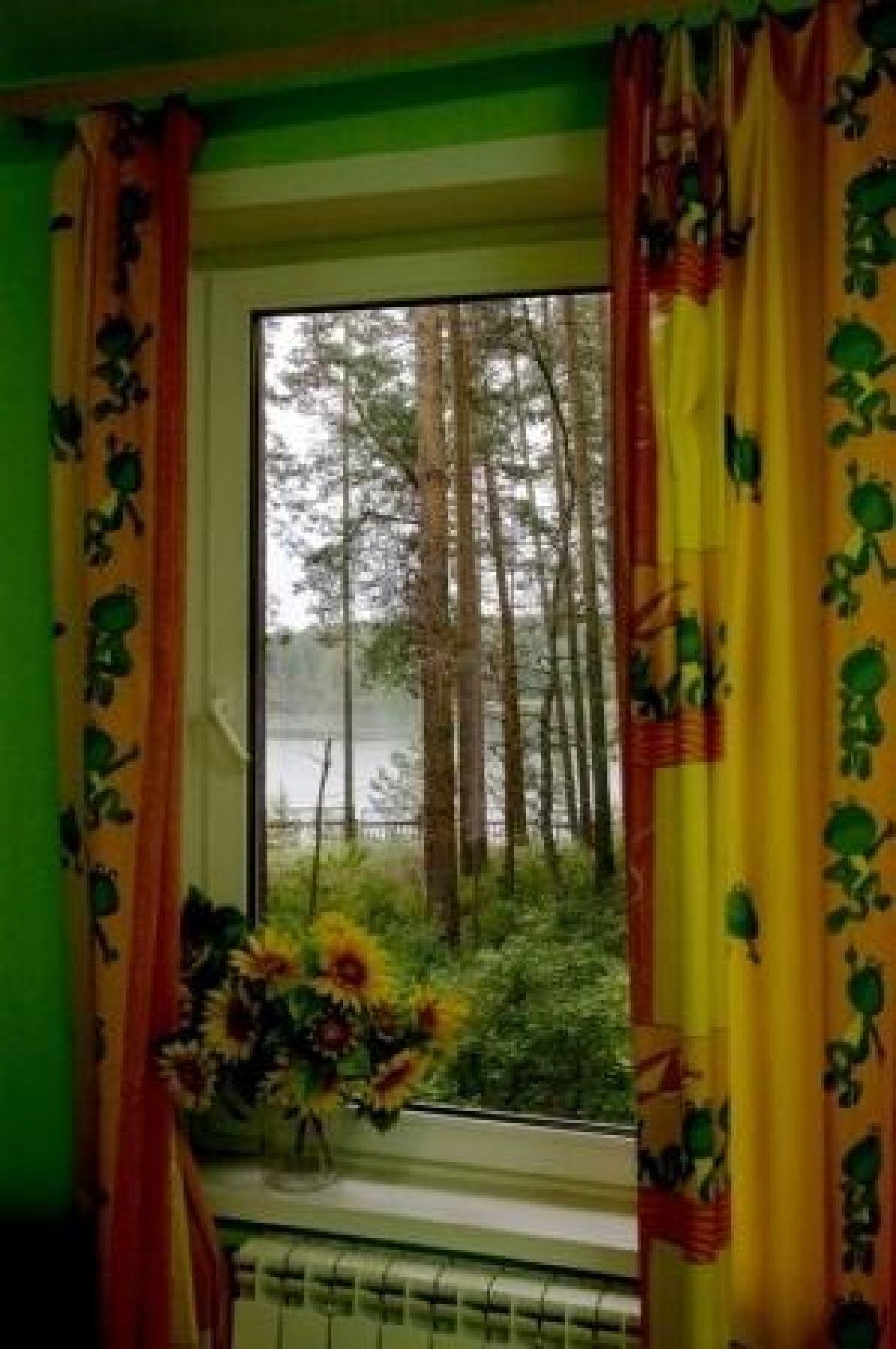 """База отдыха """"Каракан"""" Новосибирская область Дом №4 9-местный, фото 2"""