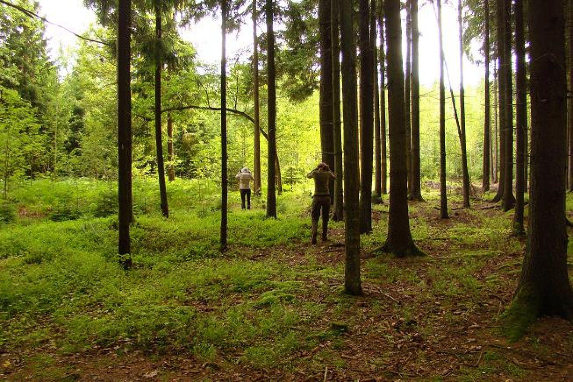 """Гостевой дом """"Лесная поляна"""" Калининградская область, фото 10"""