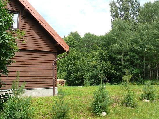 Гостевой дом «Лесная поляна» Калининградская область, фото 3