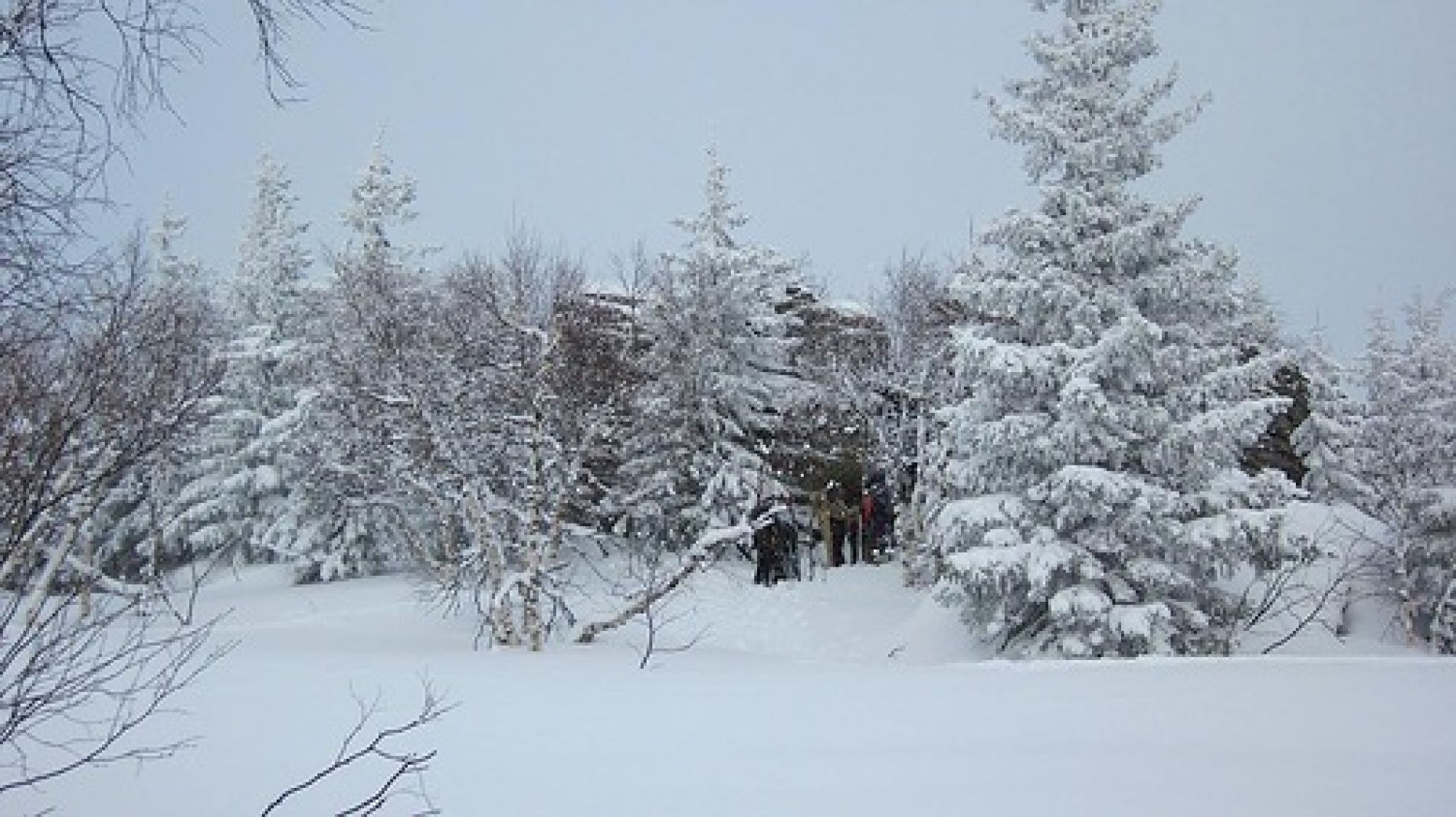 "База отдыха ""Бахмур"" Челябинская область, фото 2"