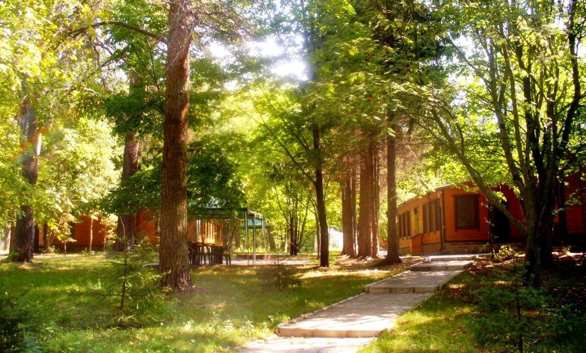 База отдыха «Лесные пруды» Московская область Одноэтажный 6-местный коттедж VIP, фото 1