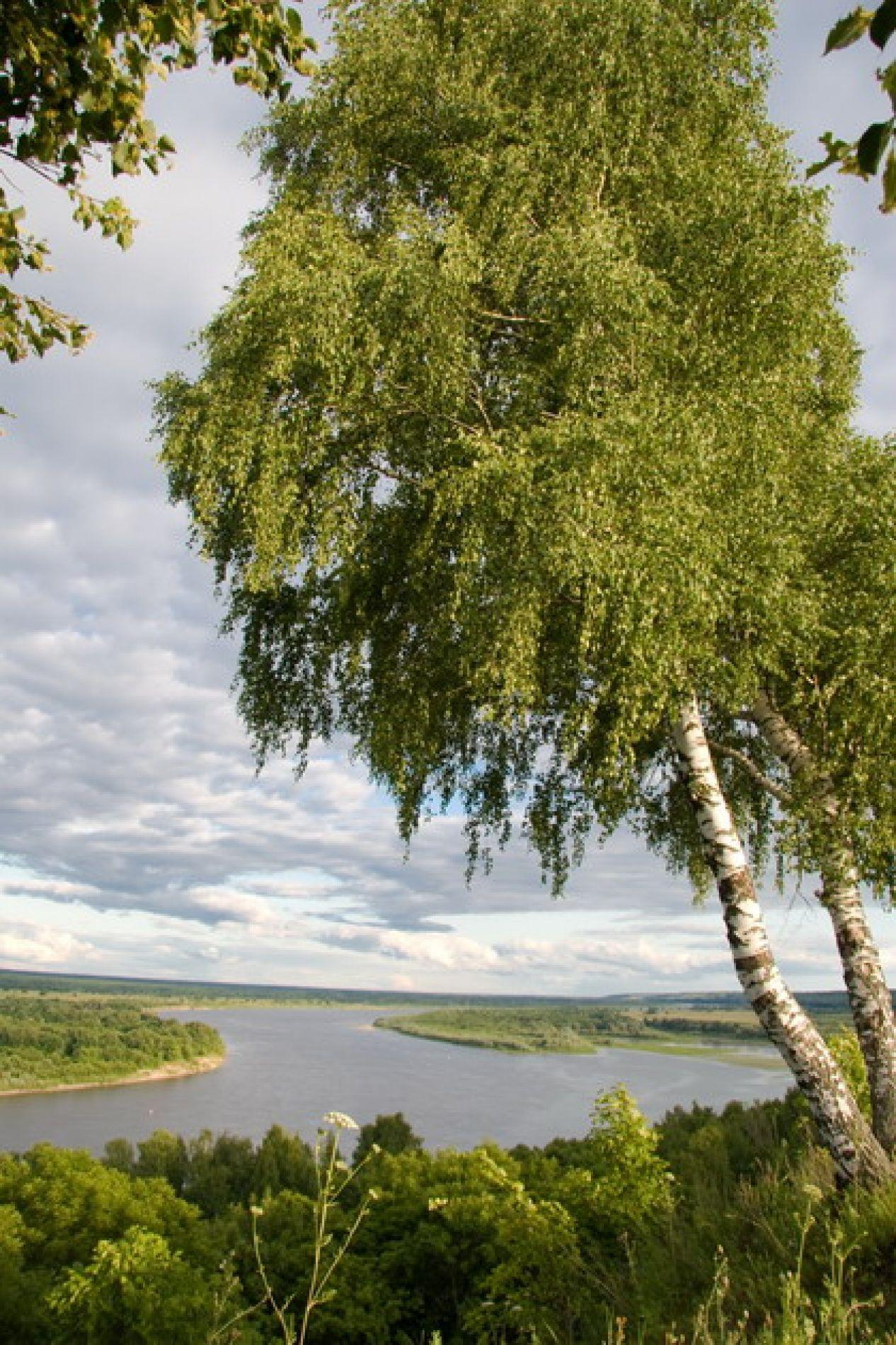 База отдыха «Мещерский городец» Рязанская область, фото 6