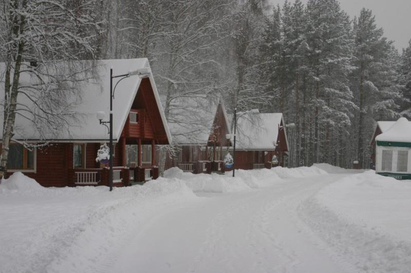 Коттеджный комплекс «Green village» Ленинградская область, фото 17