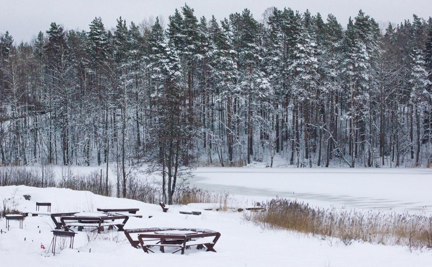 Коттеджный комплекс «Хутор Корела» Ленинградская область, фото 29