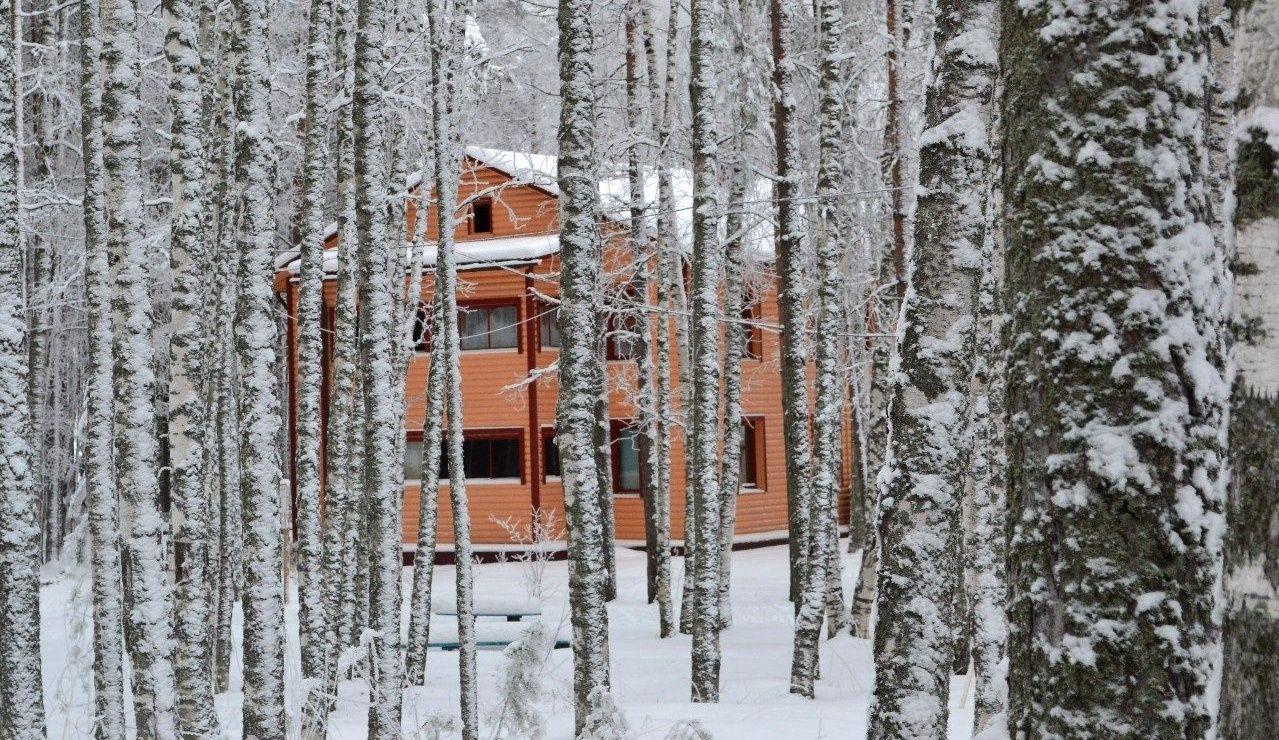 База отдыха «Кемпинг Сандал» Республика Карелия, фото 15