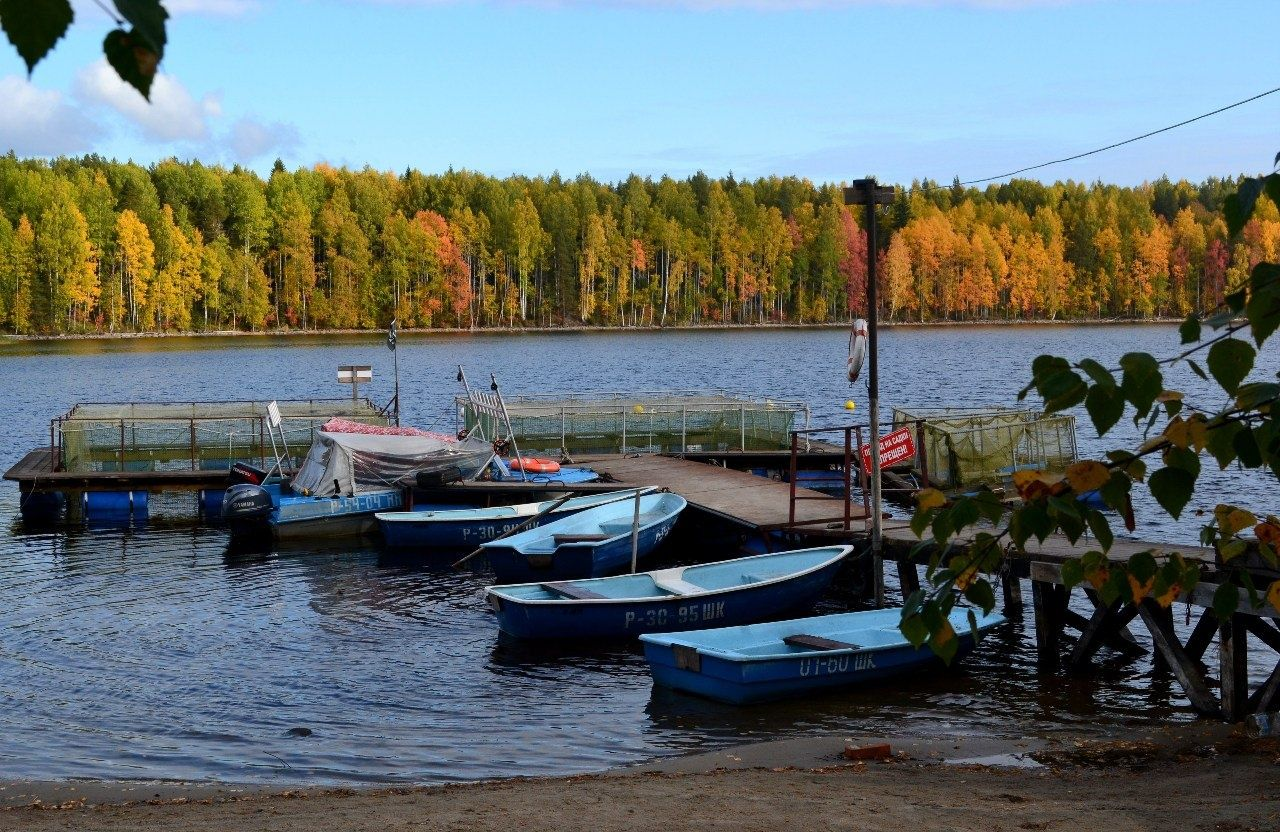 База отдыха «Кемпинг Сандал» Республика Карелия, фото 8