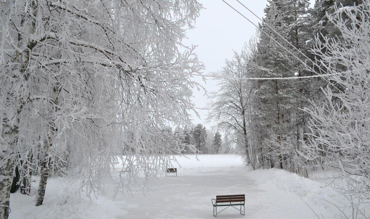 База отдыха «Кемпинг Сандал» Республика Карелия, фото 14