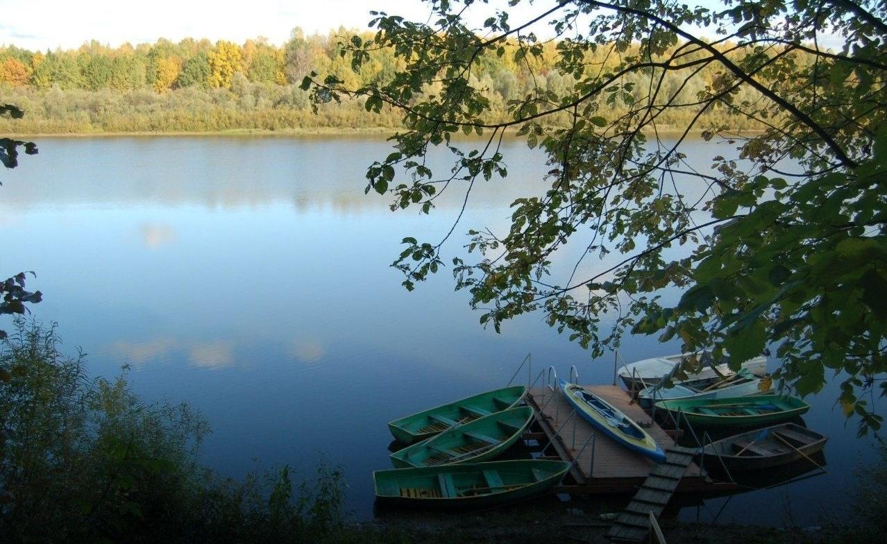 Центр отдыха «Подсолнухи» Нижегородская область, фото 12