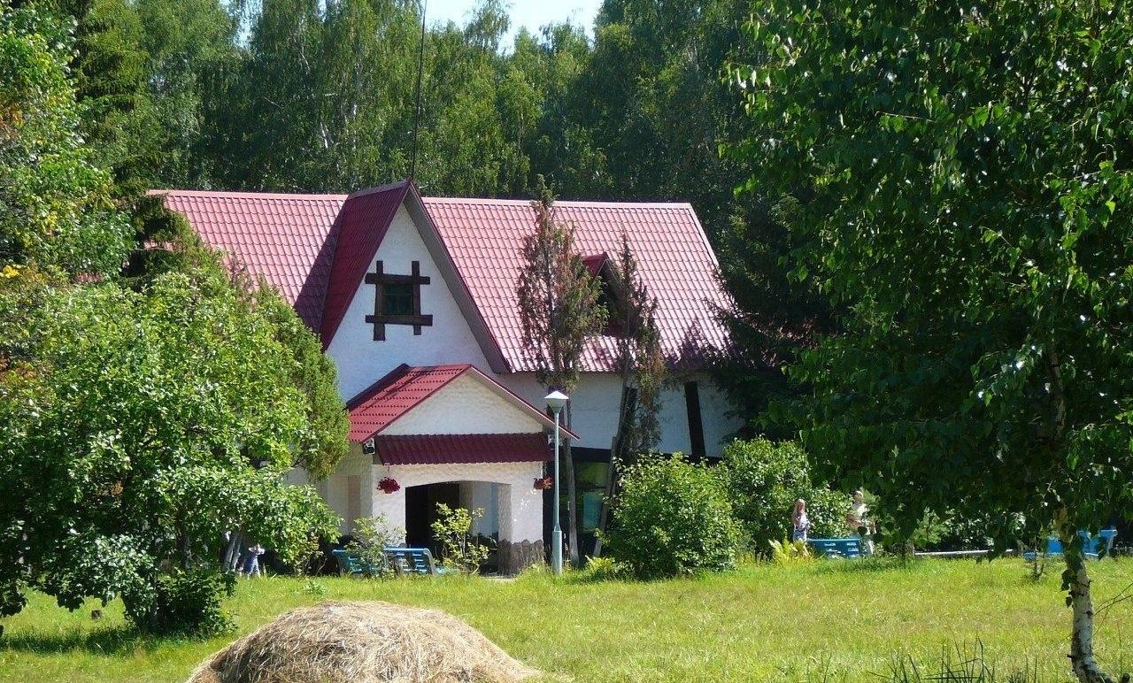 Центр отдыха «Подсолнухи» Нижегородская область, фото 9