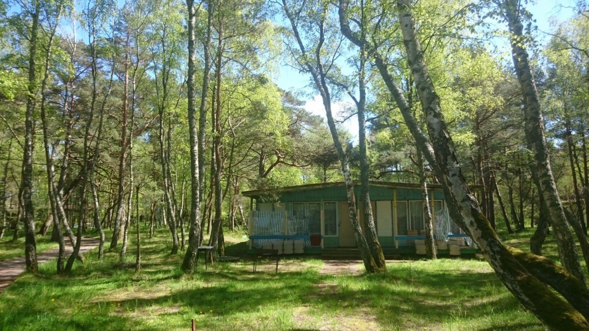 """Гостевой дом """"Лесное"""" Калининградская область, фото 5"""