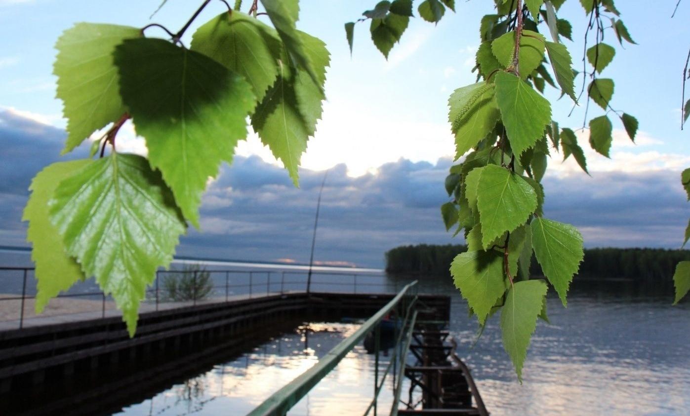 База отдыха «Залив» Нижегородская область, фото 10