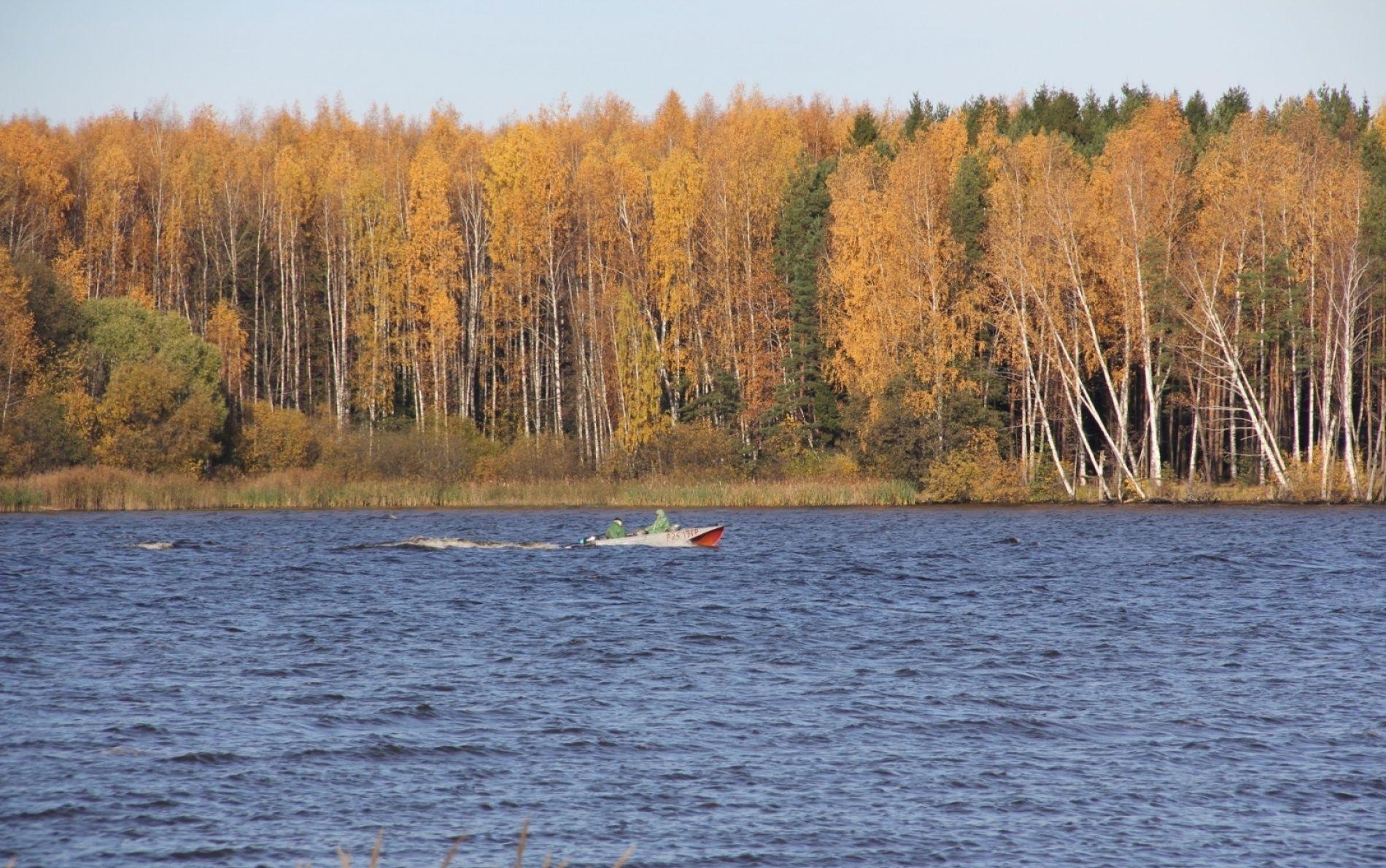 База отдыха «Залив» Нижегородская область, фото 11