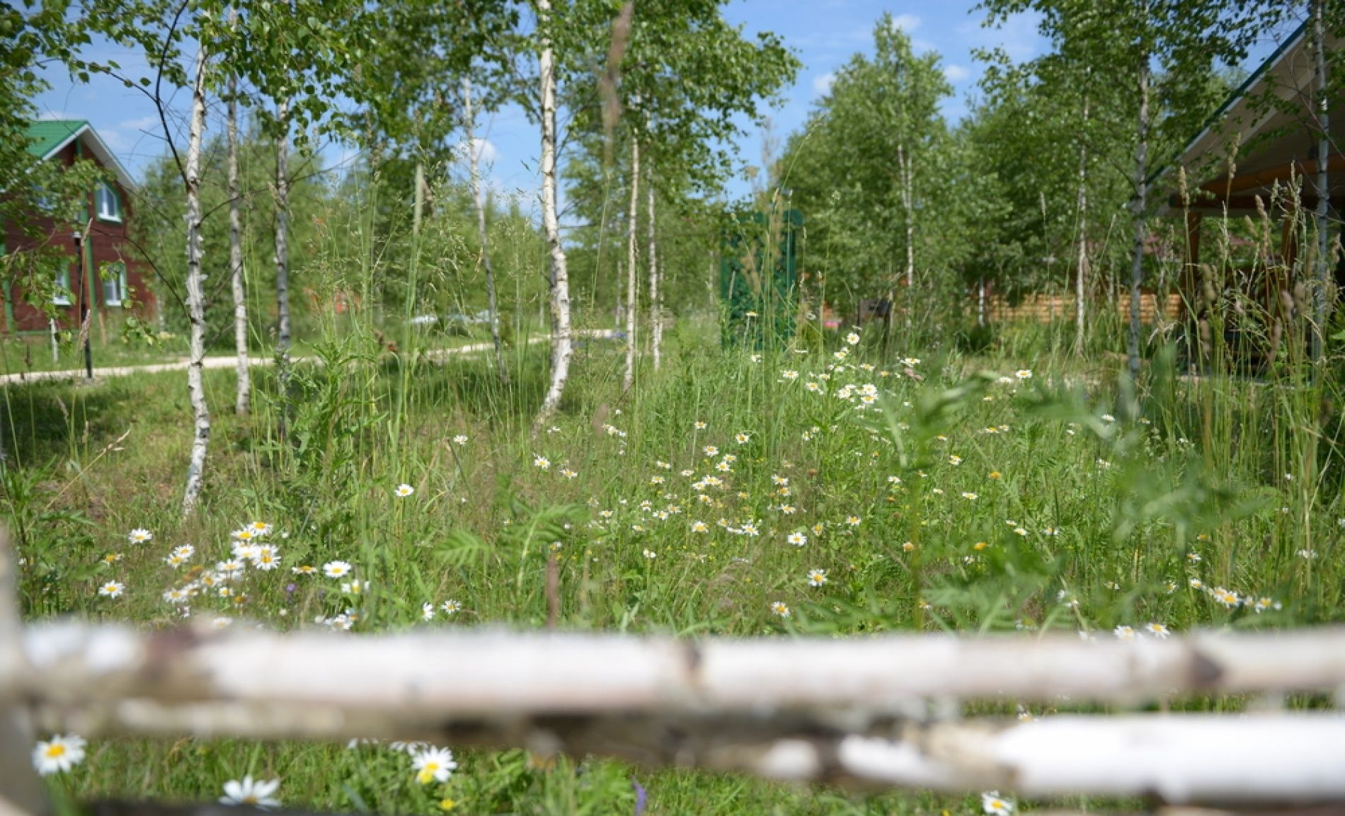 """База отдыха """"Кава"""" Тверская область, фото 18"""