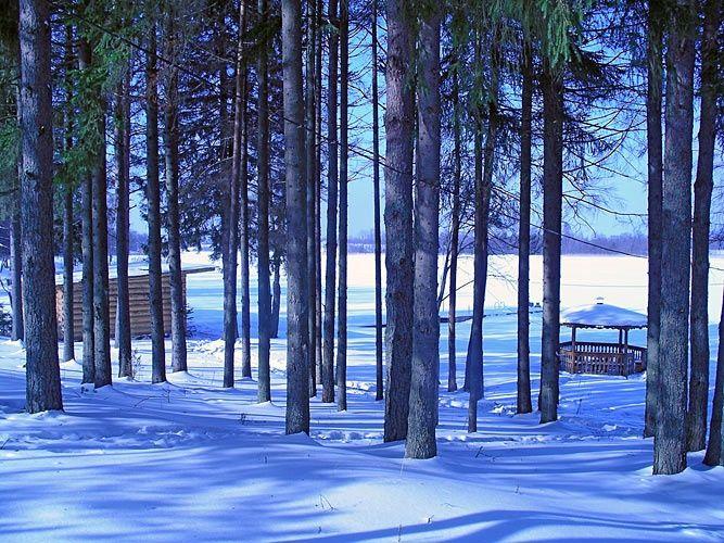 База отдыха «Яр-Селигер» Тверская область, фото 16