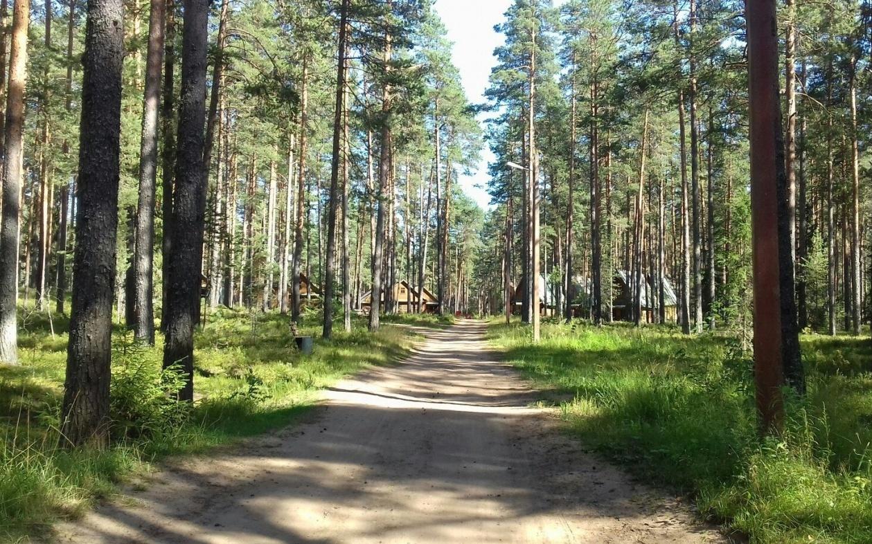 База отдыха «R.C. Озерная» Тверская область, фото 11