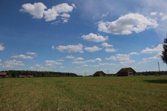 Эко-ферма «Ваньково» Московская область, фото 12