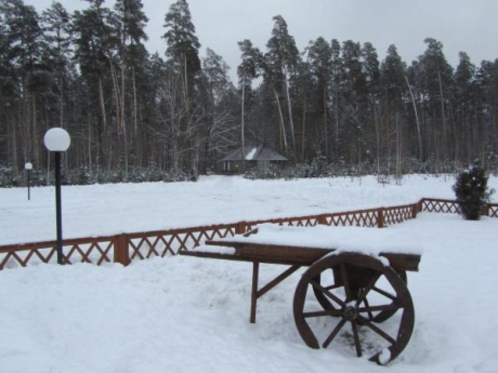 """База отдыха """"Галдым"""" Тамбовская область, фото 6"""