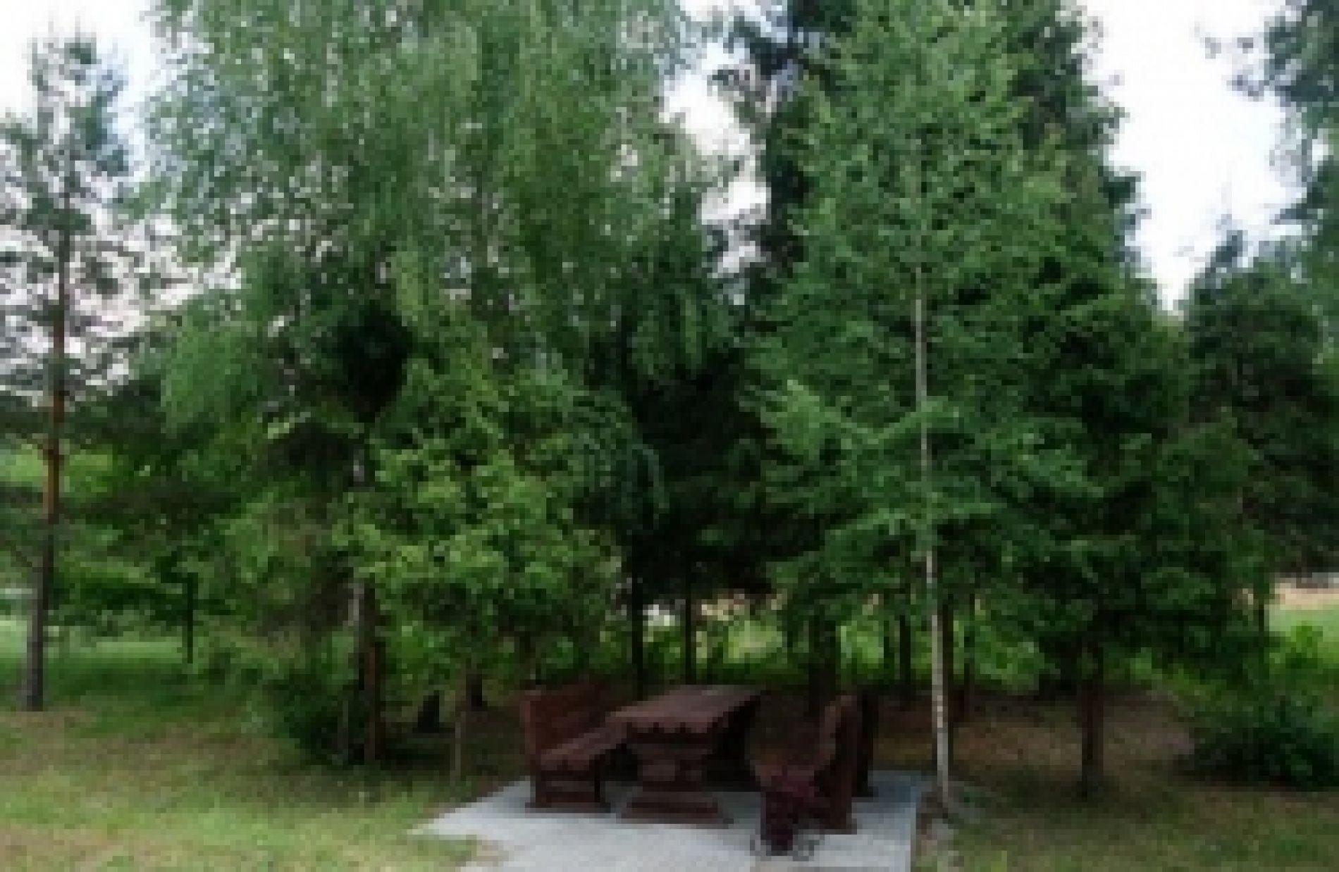 """База отдыха """"Галдым"""" Тамбовская область, фото 8"""