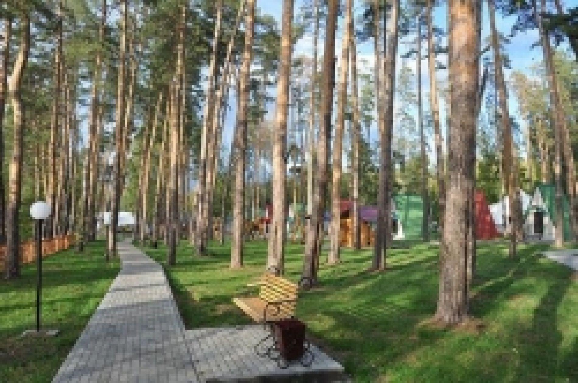 """База отдыха """"Галдым"""" Тамбовская область, фото 13"""